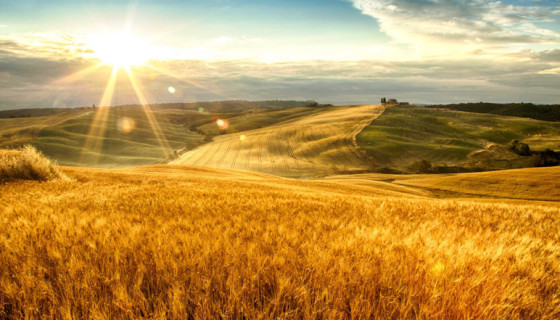 original_001-tuscan-fields-finedininglovers-2