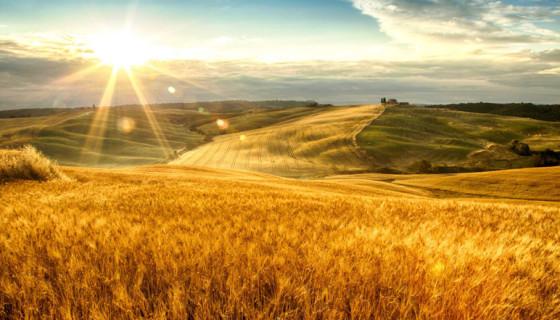 original_001-tuscan-fields-finedininglovers-2
